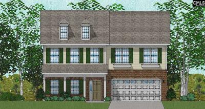 Elgin Single Family Home For Sale: 436 Stillwater #96