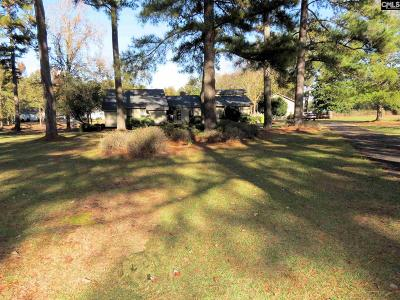 Blythewood Single Family Home For Sale: 381 Langford