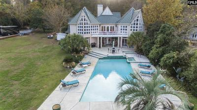 Lexington County Single Family Home For Sale: 223 Tilden Point