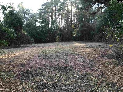 Cayce, Springdale, West Columbia Residential Lots & Land For Sale: Saint Davids Church
