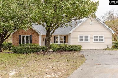 Lexington County, Richland County Single Family Home For Sale: 4 Lost Tree