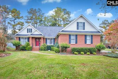 Columbia Single Family Home For Sale: 204 Chancery