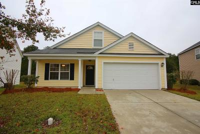 Lexington County, Richland County Single Family Home For Sale: 161 Summer Side