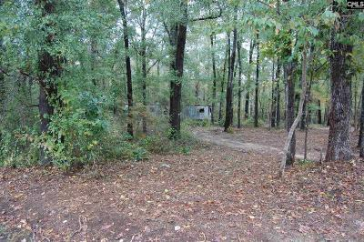 Lugoff Residential Lots & Land For Sale: 228 Park
