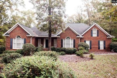 Lexington County Single Family Home For Sale: 228 Harbor Heights