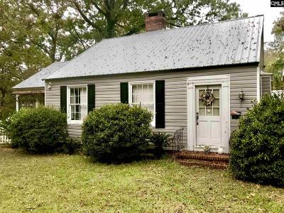 Orangeburg Single Family Home For Sale: 675 Stanley