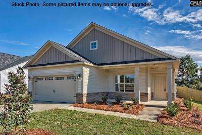 Single Family Home For Sale: 210 Shoals Landing