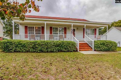 Lexington Single Family Home For Sale: 228 Louisa
