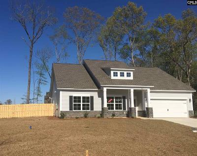 Chapin Single Family Home For Sale: 306 Saucer Way