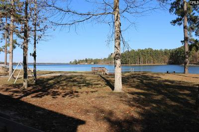 Lexington County Single Family Home For Sale: 518 N Lakeshore