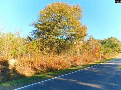 Residential Lots & Land For Sale: 410 Boozer