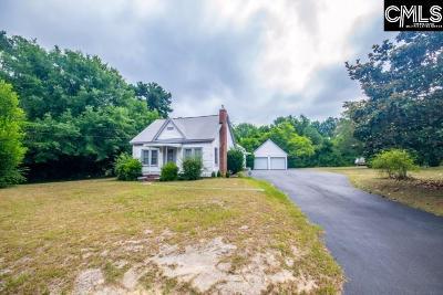 Lexington County Single Family Home For Sale: 207 Swartz