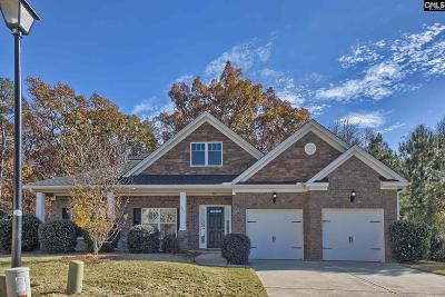 Lexington Single Family Home For Sale: 327 Spillway