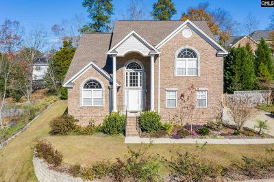 Lexington County Single Family Home For Sale: 128 Creek Knoll Lane