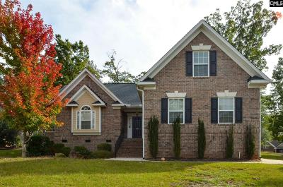 Lexington County Single Family Home For Sale: 201 Quiet Cove