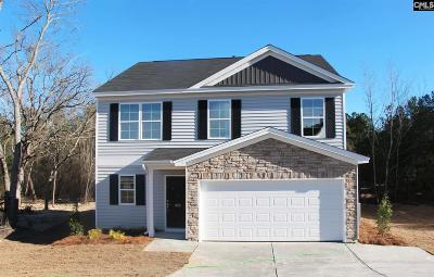 Lexington County Single Family Home For Sale: 453 Peak Copper