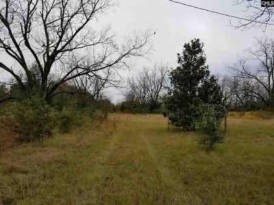 Lexington County Residential Lots & Land For Sale: 272 Rister