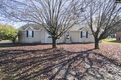 Lexington Single Family Home For Sale: 100 Oak Leaf