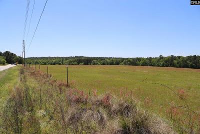 Lexington County Residential Lots & Land For Sale: 172 Muddy Springs