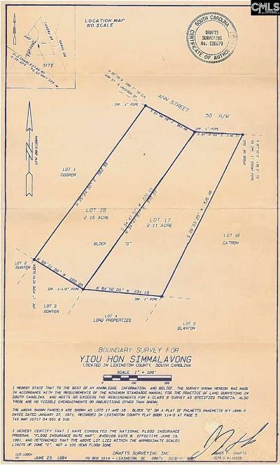 Pelion Residential Lots & Land For Sale: 141 Ann