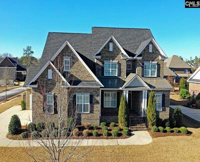 Chapin Single Family Home For Sale: 336 Anchor Bend