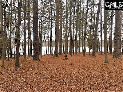 Wateree Hills, Lake Wateree, wateree keys, wateree estate, lake wateree - the woods Single Family Home For Sale: 397 Dutchman