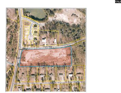 Lexington Residential Lots & Land For Sale: Old Orangeburg