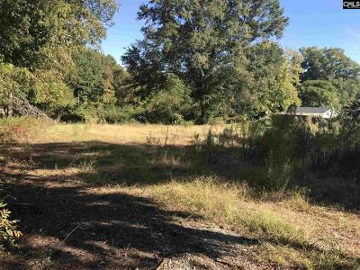 Lexington County Residential Lots & Land For Sale: Palmer