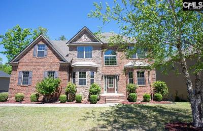 Chapin, Gilbert, Irmo, Lexington, West Columbia Single Family Home For Sale: 310 Brooklet