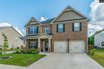 Lexington County Single Family Home For Sale: 224 Grey Oaks