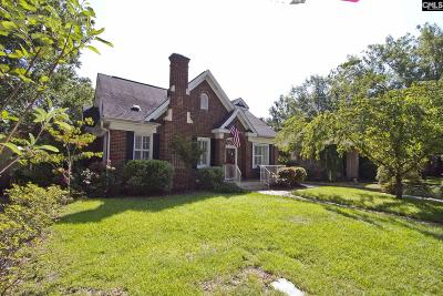 Columbia Single Family Home For Sale: 304 S Saluda