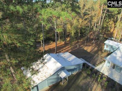 Lexington County, Richland County Single Family Home For Sale: 2620 McCords Ferry