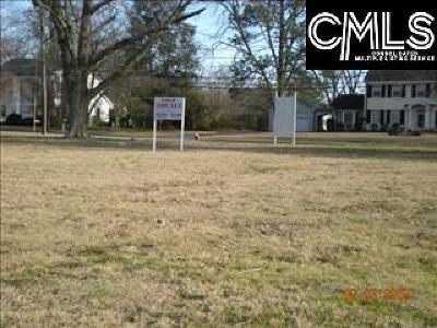Commercial Lots & Land For Sale: 313 E Columbia