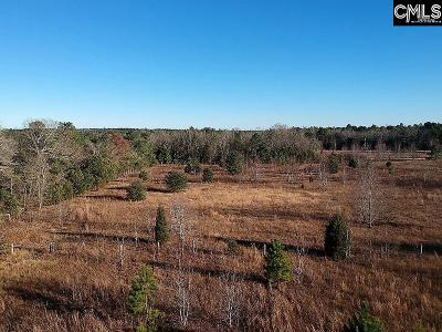 Residential Lots & Land For Sale: 381 Buckboard Road