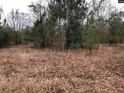 Residential Lots & Land For Sale: 219 Washington