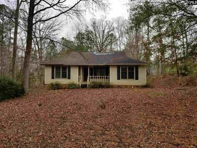 Lexington Single Family Home For Sale: 406 Frye Branch Road