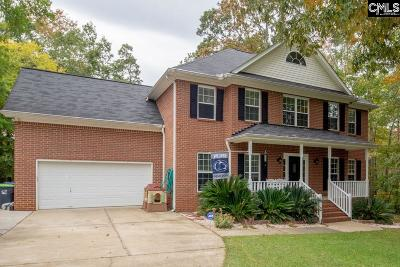 Lexington Single Family Home For Sale: 704 Stoneridge