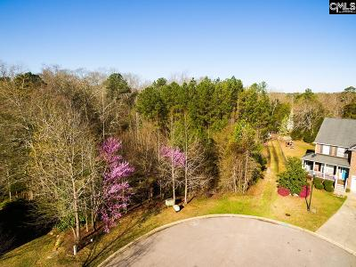 Irmo, Ballentine Residential Lots & Land For Sale: 211 Emerald Oaks