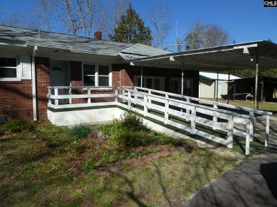 Single Family Home For Sale: 252 Academy St