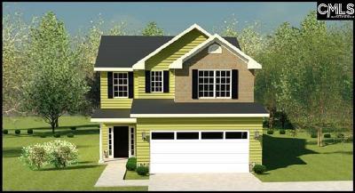 Aiken Single Family Home For Sale: 443 Lybrand