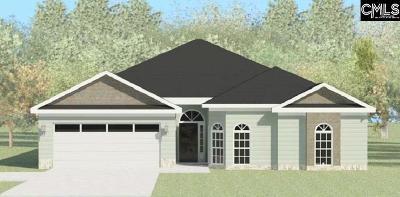 Aiken Single Family Home For Sale: 437 Lybrand