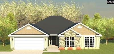 Aiken Single Family Home For Sale: 432 Lybrand