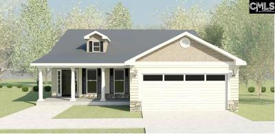 Aiken Single Family Home For Sale: 422 Lybrand
