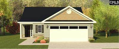 Aiken Single Family Home For Sale: 414 Lybrand