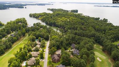 Chapin Residential Lots & Land For Sale: 107 Pointe Overlook