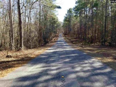 Lexington County, Richland County Residential Lots & Land For Sale: 1028 Skyview