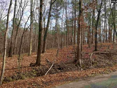 Lexington County, Richland County Residential Lots & Land For Sale: 1004 Skyview