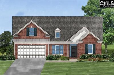 Lexington County, Richland County Single Family Home For Sale: 258 Regatta Forest