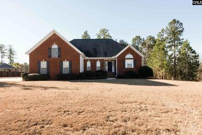 Lexington County Single Family Home For Sale: 809 Ruth Vista