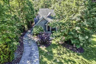Chapin, Gilbert, Irmo, Lexington, West Columbia Single Family Home For Sale: 227 Alston